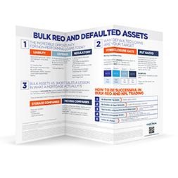 Bulk Reo Infographics